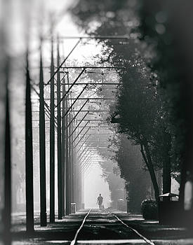 St Charlie Stroll by George Rey