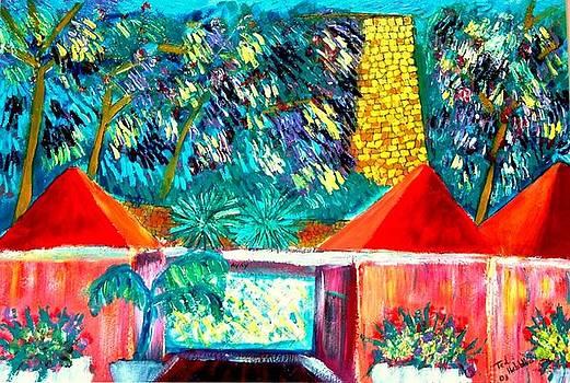 St Croix Villa by Ted Hebbler