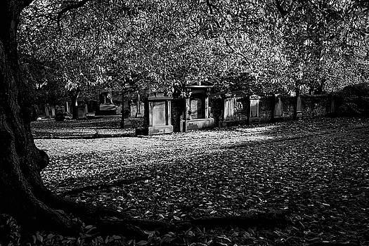 Guy Shultz - St. Cuthbert Cemetery