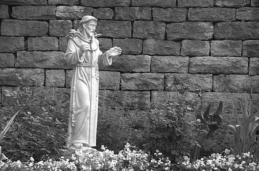 St. Francis by Anita Hohl