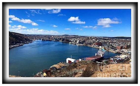 St. John's Harbour NL  by Barbara Griffin