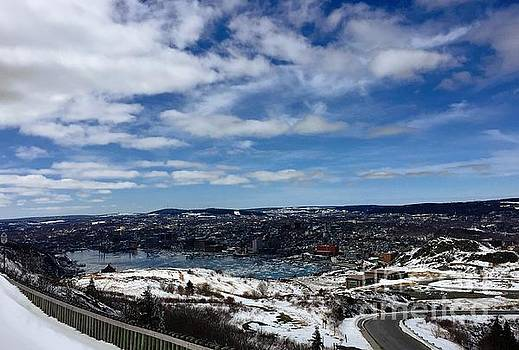 Winter Day in St. John's NL  by Barbara Griffin