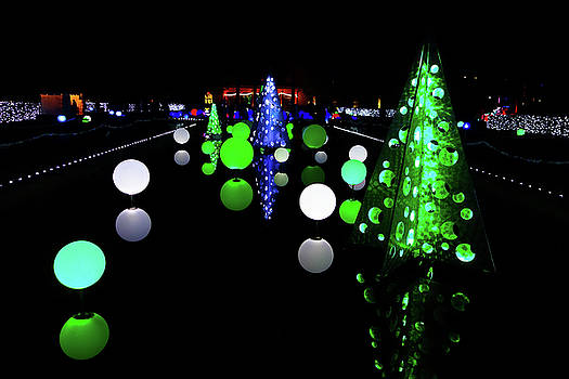 Robert Meyers-Lussier - St Louis Botanical Gardens Christmas Lights Study 1