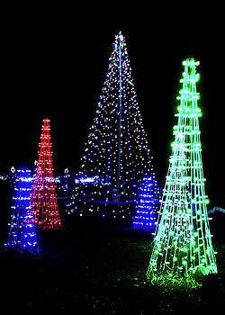 Robert Meyers-Lussier - St Louis Botanical Gardens Christmas Lights Study 4