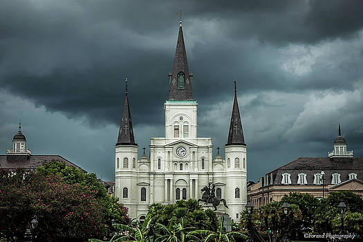 St. Louis Cathedral  by Debra Forand