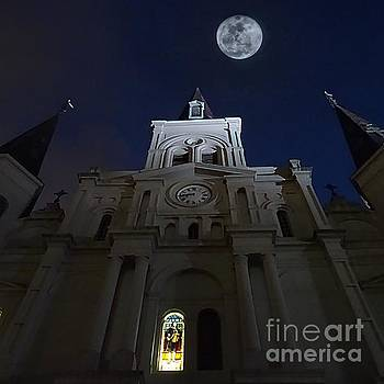 St. Louis Cathedral  by Paul Wilford
