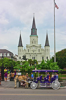 St. Louis Cathedral by Sarah Stollberg