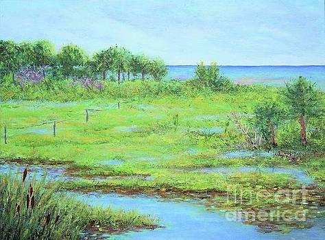 St. Marks Refuge I - Summer by Gail Kent