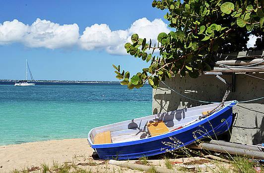 St. Martin Seascape by Allan Einhorn