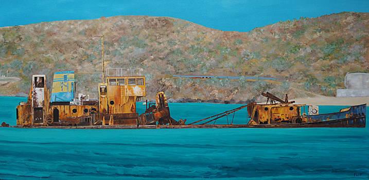 St. Martin Shipwreck by Steven Fleit
