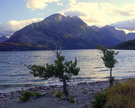 Marty Koch - St. Mary Lake