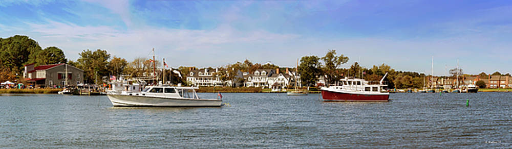 St Michaels - Miles River - Pano by Brian Wallace