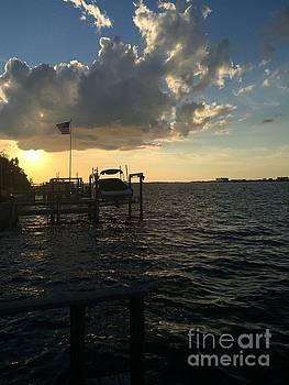 St Petersburg Florida Sunset by Linda Dautorio