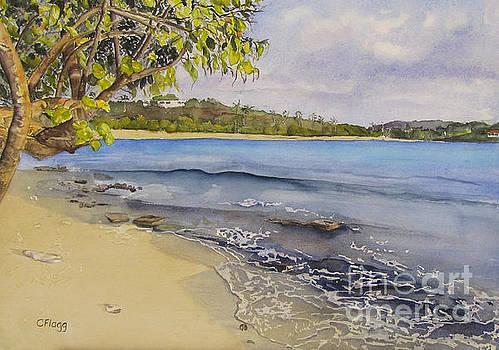 St Thomas Beach by Carol Flagg