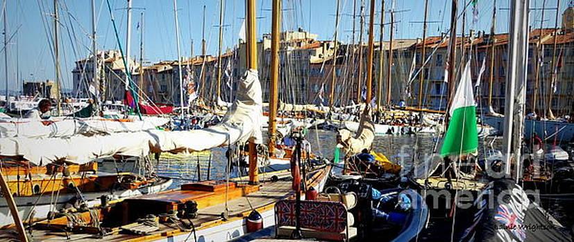 St Tropez Harbor by Lainie Wrightson