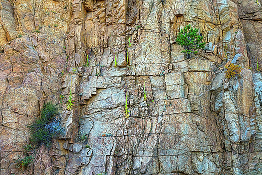 St Vrain Canyon Wall by James BO Insogna