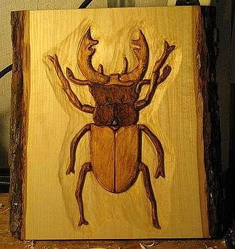 Stag Beetle by Christina White
