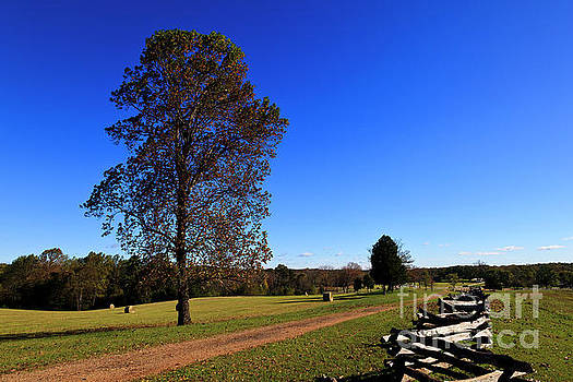 Stage Road at Appomattox by Jill Lang