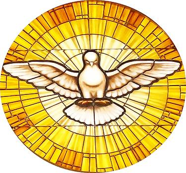 Stain Glass Dove by Joseph Frank Baraba