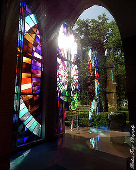 Stained Glass #4720 by Barbara Tristan