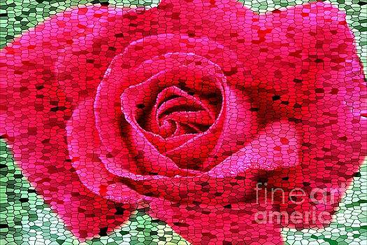 Stained Glass Rose 2 by Clare Bevan