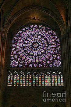 Patricia Hofmeester - Stained glass window of the Notre Dame