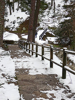 Bridge in the Snow by Alan Socolik