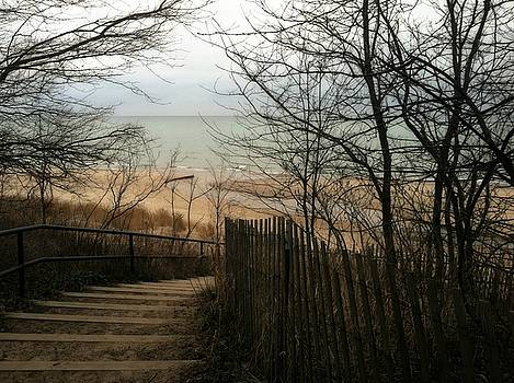 Stairs to the Beach in Winter by Michelle Calkins