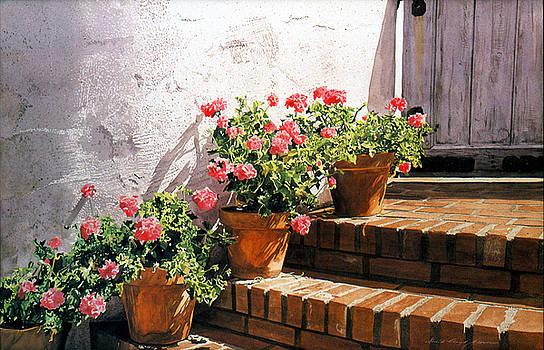 David Lloyd Glover - Stairway of Geraniums