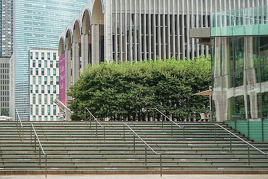 Stairway to a New York Oasis by Cornelis Verwaal
