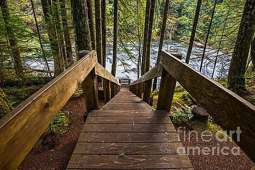 Jamie Pham - Stairway to Falls