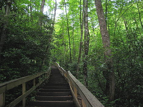 Stairway To Heaven by CGHepburn Scenic Photos