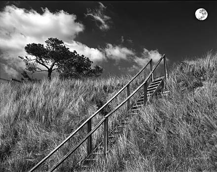 Stairway To Heaven by James Rasmusson
