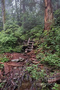 Rod Wiens - Stairway to Heaven
