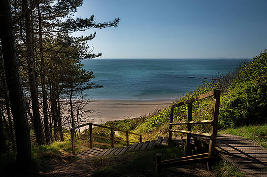 Stairway to the beach Culzean Castle by Alex Saunders