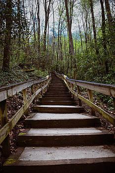 Stairway to the Top by Debbie Morris