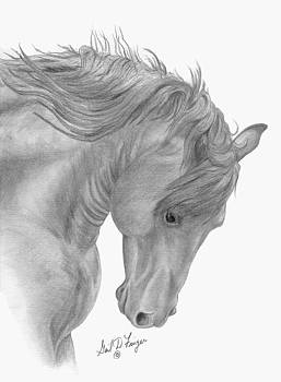 Stallion Head by Gail Finger