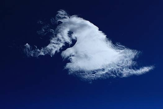 Stallion's Neck cloud by Jim Cotton
