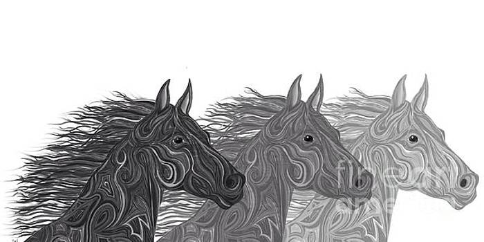 Nick Gustafson - Stallions Shades