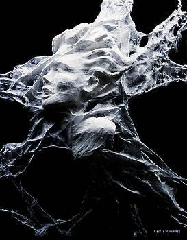 Stamina by Leslie Rhoades