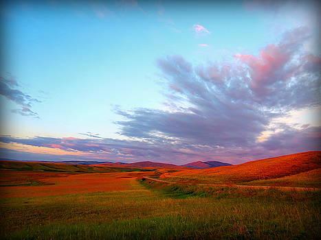 Leah Grunzke - Stanford Sunrise