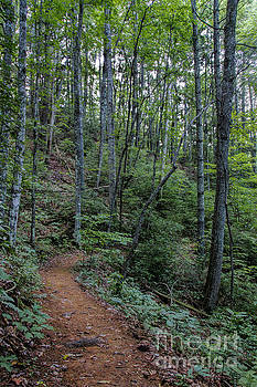 Barbara Bowen - Stanly Gap Trail