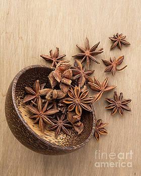 Edward Fielding - Star anise pods