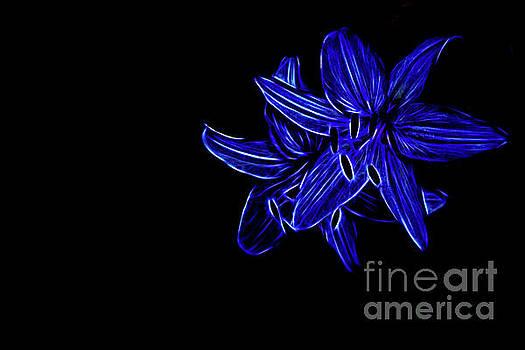 Star Bright by Marilyn Cornwell