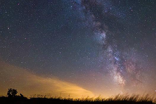 Star Dust by Joseph Mills