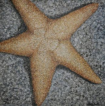 Star Fish by Sloane Keats