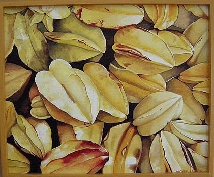 Michael Earney - Star Fruit