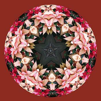 Star of the Poinsettias by Keri Renee