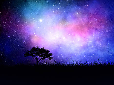 Valdecy RL -  Star Silhouette