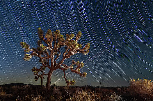 Star spun by Bryan Xavier